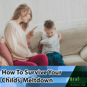 Mom with son having a tantrum with text overlay How To Survive Your Child's Meltdown